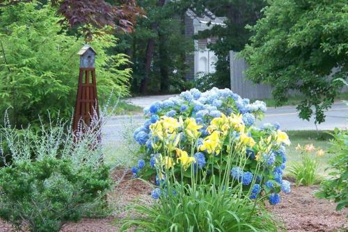 Iron Birdhouse Sculpture, Hydrangeas, Perennials