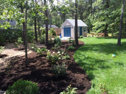 Patio, Plantings, Curved Edging